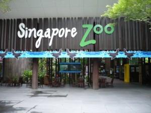 Singapore-Zoo